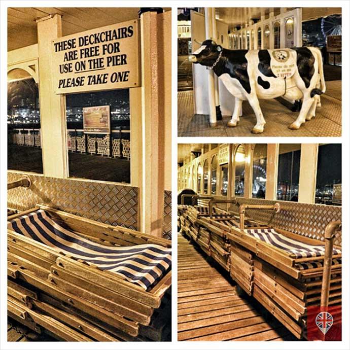 brighton pier cow chairs