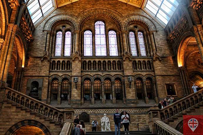 natural history museum darwin