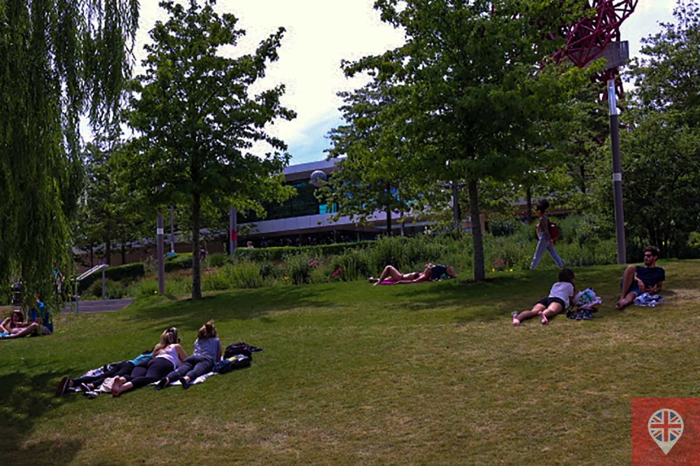 Olympic park grass