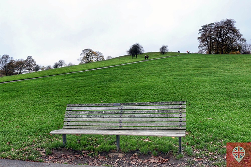 primorse-hill-park-banco