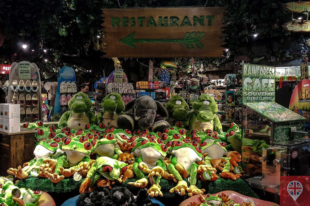 rainforest-cafe-loja