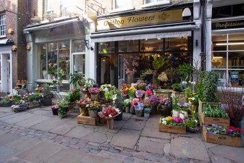 hampstead-flask-walk-flower-shop