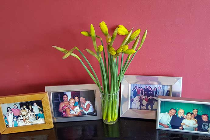 daffodils on mantelpiece