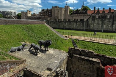 Tower of London lions