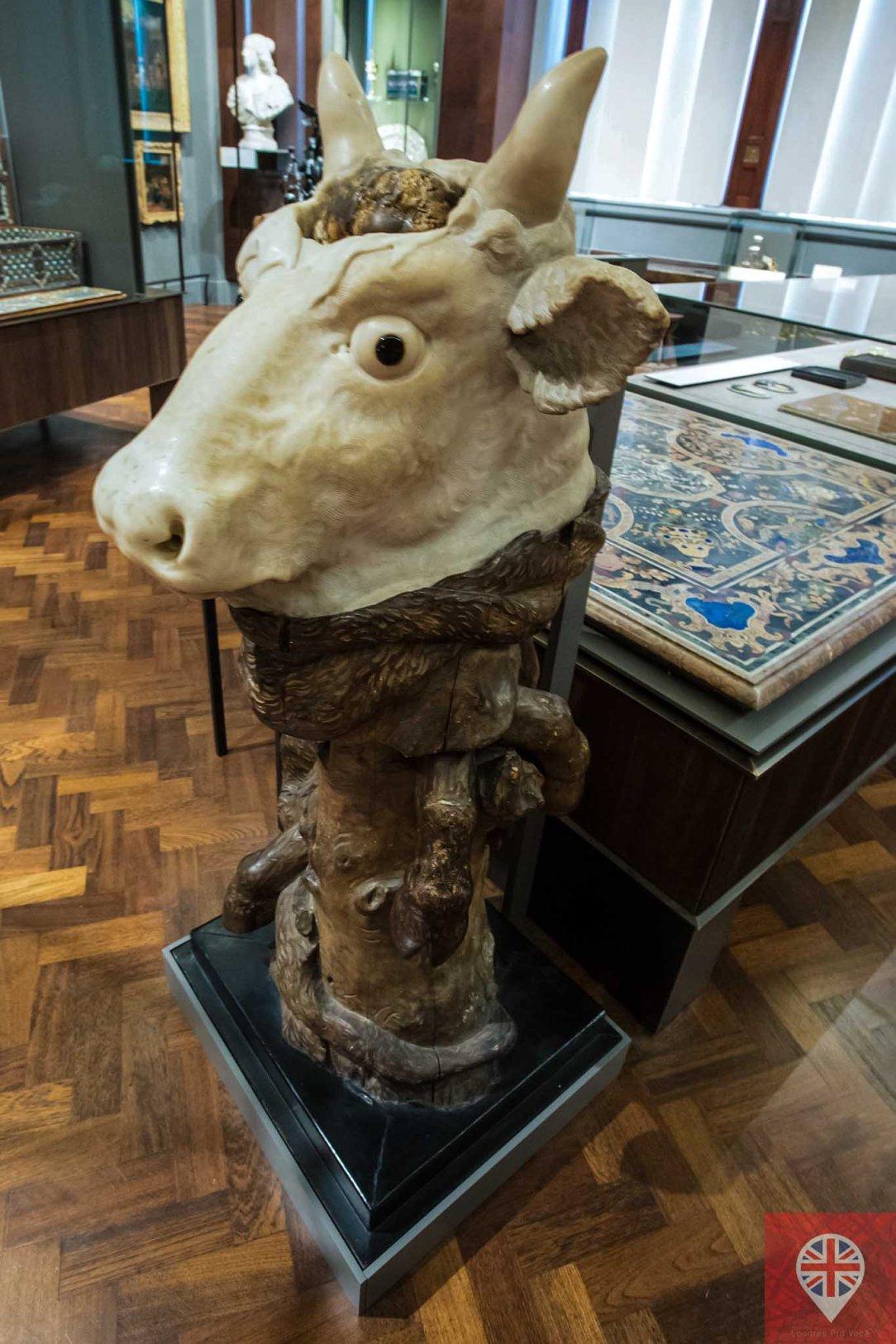 V&A ox head