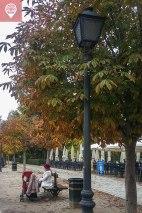 Parque del Retiro outono fernanda