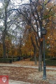 Parque del Retiro outono