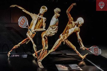 Body Worlds tennis