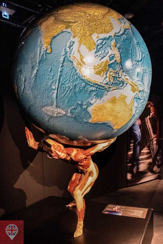 Body Worlds world