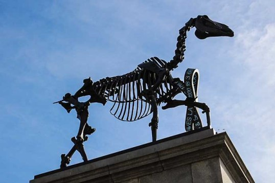 fourth plinth Gift Horse 2
