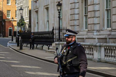 armed police downing street 3