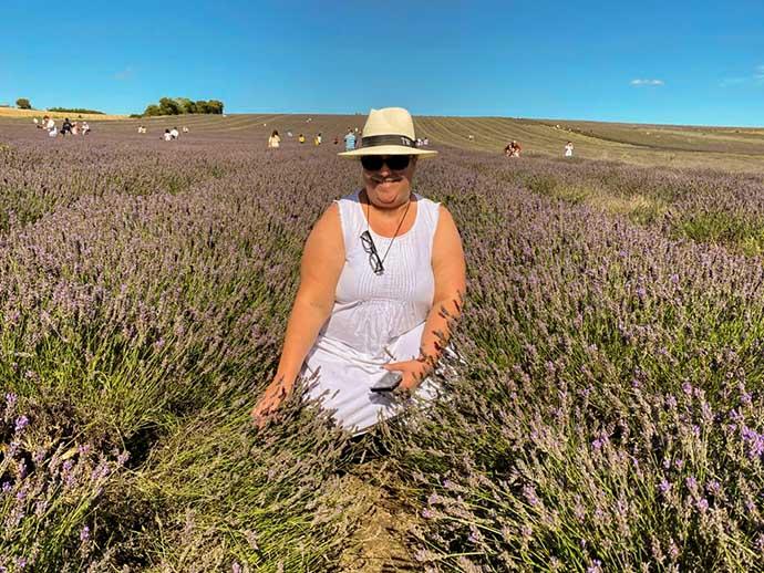 hitchin lavender sentada